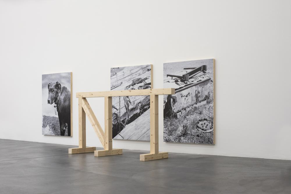 Kelly Tissot, Hurdle and locket, Holz, Stahl; Mute mutt and deadspace, Digitaldrucke auf Aluminium, Holz
