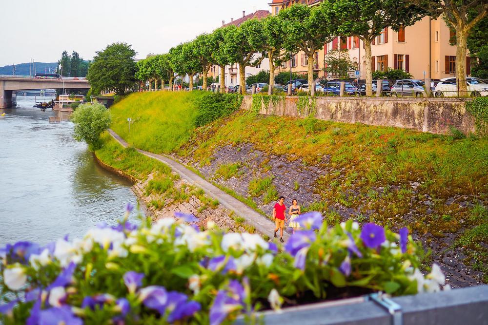 Spaziergang am St. Alban-Rheinweg