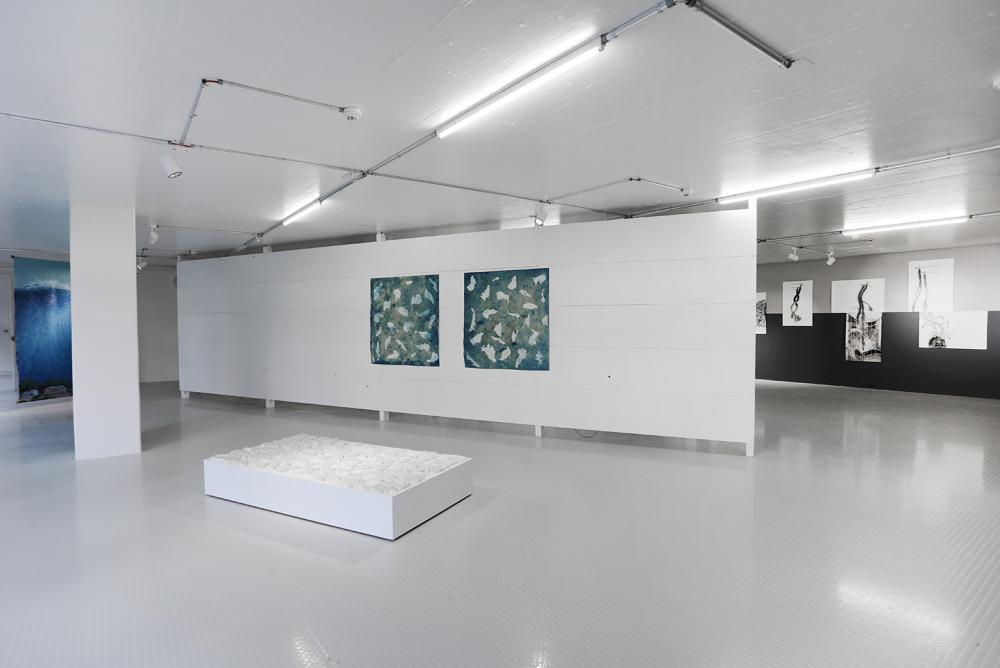 Ausstellungsansicht Elisa Bergel Melo und Christopher Cozier