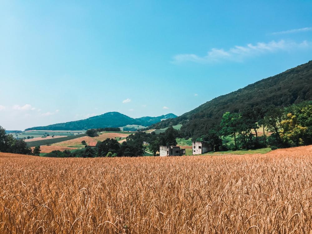 Vorbei an Felder und Wiesen