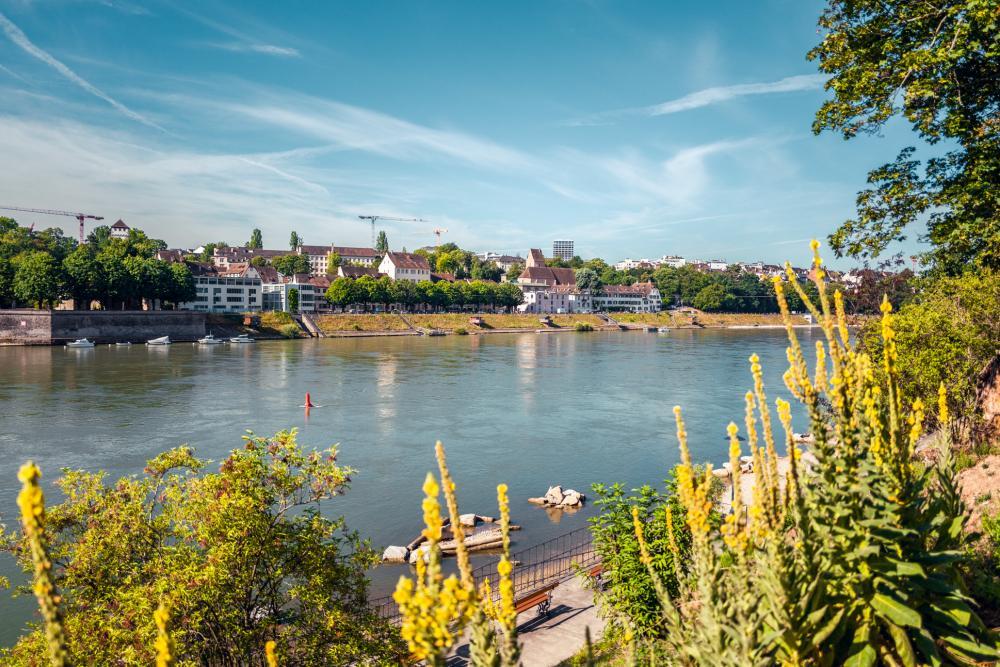 Die Aussicht im Wettstein-Quartier spricht das ganze Jahr für einen entspannten Spaziergang unter den Bäumen am Rhein entlang.